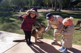 Khám phá nước Úc xinh đẹp - Xứ sở chuột túi Kangaroo